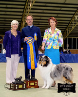 Best In Specialty Show with inscription